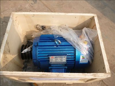 Electric Motor for PE150X250 Small Jaw Crusher